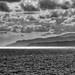 Crete 2017-323-Edit.jpg