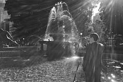 Hyde Park, 2017. (Albion Harrison-Naish) Tags: sydney newsouthwales australia hydepark streetphotography sydneystreetphotography albionharrisonnaish iphoneography mobilephotography iphone iphonese hipstamatic blackeyssupergrainfilm