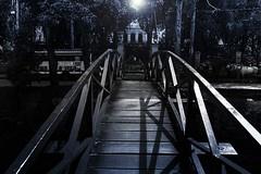 ponte (jadc01) Tags: nikon1855mm petrópolis bridge light flare shadows perspective horses wood clapboard