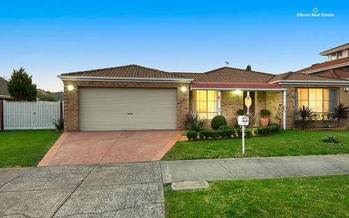 75-77 David Collins Dr, Endeavour Hills VIC 3802