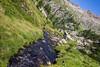 Creek in Valle dei Principi, Gressoney Saint Jean