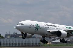 UP3A4800 (ken1_japan) Tags: 大阪国際空港 伊丹空港 itm 伊丹スカイパーク スカイランドハラダ japan osaka airplane ana jal canon 7dmkⅱ ef70200mm f28lisiiusm