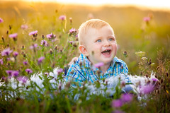 Baby on a Summer Meadow (Mira Schwanzer) Tags: baby child meadow field hot summer sun sunny day smile flowers outdoor portrait picture canon shooting