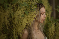 paige bottcher (Lichon photography) Tags: girl woman female portrait fantasy fairy face photography surreal surrealism gree green bush beauty nature