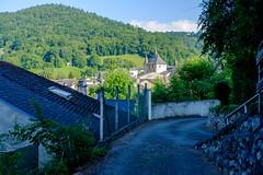 Vue sur St Pé (alainlecroquant) Tags: coteauxdesaintpédebigorre saintpédebigorre coteaux abbatiale palombière randonnée hautespyrénées vaches lavoir ferme cheval vtt fleurs