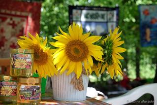 Sonne und Blumen zum Wochenstart