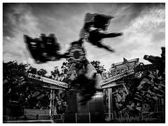 Flying Legs 2 (S|SCH) Tags: s|sch siegfried schmid schwarzundweis shadow shadows schweinfurt schatten bw blackandwhite blackanwhite olympus monochrome monochrom