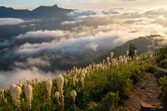 Fog creeps in from the west (Laura Jacobsen) Tags: alpinelakeswilderness bandera banderamountain hiking i90 iraspringtrail littlebandera mountains sunset trails washington wildflowers