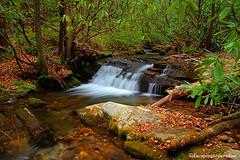 Courthouse+1_9353_TCW (nickp_63) Tags: waterfall cascade courthouse falls pisgah national forest north carolina nc fr140 nature rocks platinumheartaward