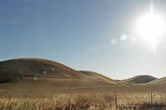 The Shape of Seduction (skipmoore) Tags: california yolocounty grassland hills landscape driveby