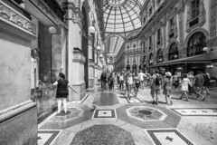 Milano - Giugno 2017 (Maurizio Tattoni....) Tags: milano italy lombardia galleriavittorioemanuele persone cane vetrina bn bw blackandwhite biancoenero monocrome leica 16mm mauriziotattoni