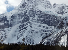 Avalanche in icefields parkway (seann.mcauliffe) Tags: canada summer alberta icefield parkway rocky mountains avalance
