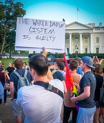 2017.07.26 Protest Trans Military Ban, White House, Washington DC USA 7614