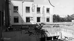 25-Toit @Clinique [Urbex] (Mhaggot) Tags: toit clinique urbex black white a550 sony