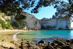 Paradisiacal Beach (Lucas Argenton) Tags: beach paradisiacal nature water stones tree chill