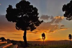 Good light...Montalcino sunset (stevelamb007) Tags: sunset goodlight montalcino italy tuscany stevelamb nikon d90 nikkor 18200mmvr