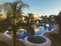 The pool..xx (shona.2) Tags: algarve peaceful summer iphone7plus vacation holiday morning reflection swimmingpool palmtrees portugal poolside