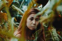 IMG_2784 (Niko Cezar) Tags: up diliman portrait nature school asian girl campus street manila philippines university white sunflower flowers