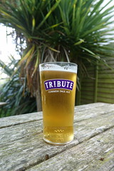 Beer. Glass of Tribute DSC01212 (rowchester) Tags: glass beer birra biere stakol olut cerveza ol piwo tribute cornwall brewery ale
