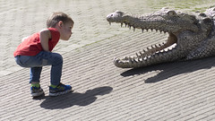 hallo...... (Niek Goossen) Tags: dierentuin krokodil kind humor zoo blijdorp rotterdam