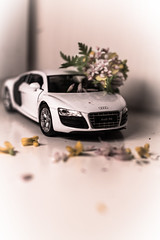 Weddings (Loore-Ly) Tags: weddings marriage car couple stillife blooms flower mashine engine motor wheels drive luxury sport