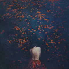 removing petals (brookeshaden) Tags: