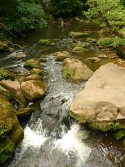Baden in der Prüm (Jörg Paul Kaspari) Tags: irrel irrelerwasserfälle sommer summer eifel südeifel fels felsen sandstein prüm fluss river natur nature wasserfall waterfall wildeeifel