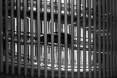 (Jason Clifton) Tags: canon canon5dmarkiii 5dmarkiii 5dm3 ef35mmf14lusm 35mmf14l 35mm 35mml streetphotography documentary photojournalism nationalgeographic natgeo primelens nozoom noflash availablelight existinglight naturallight architecture italy blackandwhite bnw bw monotone monochrome jasonclifton jasoncliftonflickr flickrjasonclifton car parkinggarage carpark abstract florence florenceitaly