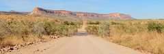 The famous Pentecost River Crossing (Louise Denton) Tags: pentecost river crossing road gibbriver kimberley adventure 4wd thegibb wa australia reddirt outback pano