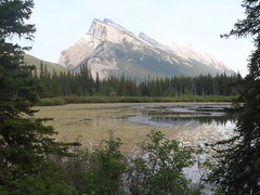 Banff National Park (Mr. Happy Face - Peace :)) Tags: albertabound cans2s banff forest environment lake nature canadaparks art2017 tree tranquility scenery summer snowcaps rockymountains yyc rockies