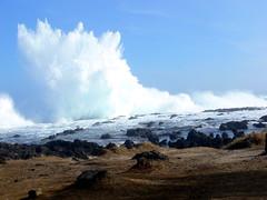 Houle d'hiver (MrBins) Tags: vagues houle wave