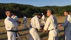 2017_kyokushinhellas_summercamp_1691