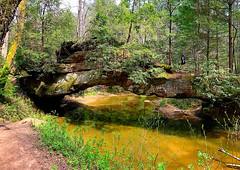 Kentucky (#KPbIM) Tags: 2017 nature travel april river trip kentucky gorge adventure red vacation spring hiking