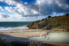 Houses on the edge - Névez (delphine imbert) Tags: névez bretagne ocean atlantique vue vacances nature paysage plage sable ciel