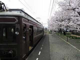Tram-train in Kyoto (帷�ノ辻駅)