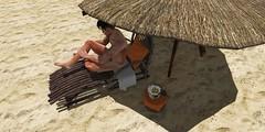 Desert Lounger (billybeaverhausen) Tags: secondlife signature beaches tanning loungers