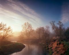 By the river Bobrza dawn (fotoswietokrzyskie) Tags: fog spring water nature river poland film analog landscapes dawn medium format kodak ektar 100 bobrza mamiyarz67 6x7 landscape tree mist