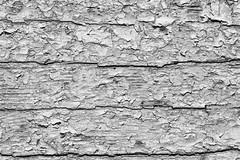 003_Flickr Farbe.jpg (stefan.mohme) Tags: alt marode abgeplatzt rissig kroatien grundfarben nahaufnahme kamera schwarzweiss kroatien2013 macro oberflaechen jahreszeiten weiss textur patina baumaterial oberflaeche cres lack struktur sommer color old structure white