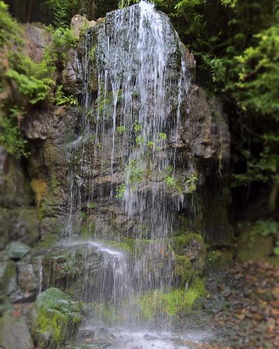 Kilfane Waterfall