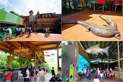06 (樂活的大方) Tags: 20170724sb 新加坡動物園 river safari
