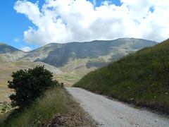 Castelluccio 2017 (Katnis2016) Tags: castelluccio castellucciodinorcia norcia umbria italy terremoto fioritura fiorituraluglio2017