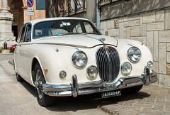 Vintage Vehicles at Montalto, June 2017 (MikePScott) Tags: ascolipiceno camera car italia italy jaguar lemarche lens montaltodellemarche nikon2470mmf28 nikond800 transport