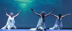 SBS-LB-49 (sinakone) Tags: richmond ballet dance byrd park dogwood dell latin
