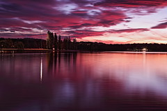 Canberra under the clouds ڪينبرا جهڙجي ڇانوءَ هيٺ (channa.razaque) Tags: coulds redsky sky red pink canberra visitcanberra visitaustralia lakeburleygriffin lake water canon canon6d sunset exposure longexposure trees beauty beautiful beautifulaustralia nature