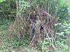 2017-07-25__mishpacha_image6 (EJKAev) Tags: europäischejanuszkorczakakademie mishpacha sommer abenteuer survival janusz korczak