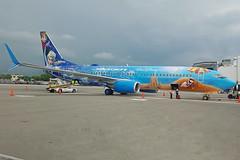 C-GWSV Boeing B737-8CT Westjet Frozen Special Colours Puerto Vallarta 17th September 2016 (michael_hibbins) Tags: