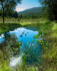 A drop of the sky (kud4ipad) Tags: 2017 arpada ukraine zakarpattia lake landscape mountain tree