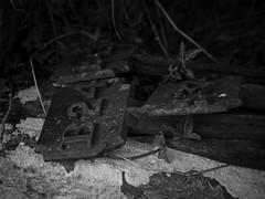 cambusmichael St Martins Church nr stormontfield bw-7220066 (E.........'s Diary) Tags: eddie ross olympus omd em5 mark ii july 2017 scotland perthshireddierossolympusomdem5markiijuly2017scotlandperthshire