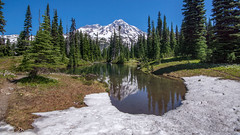 Mirror (writing with light 2422 (Not Pro)) Tags: mountrainiernationalpark mountrainier mountain volcano stratovolcano lake tarn meadow trees firtrees pine snow mirrorlakes mirror richborder sonya77 sigma1020mmlens wideangle landscape washingtonstate