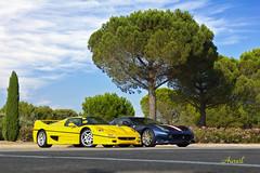 F50 or F12TdF ? (AureilFerrari) Tags: aureil auto automobile automotive car coche voiture wagen giallo jaune canon eos 60d paul ricard httt castellet circuit track supercar supercars hypercar limited limitée